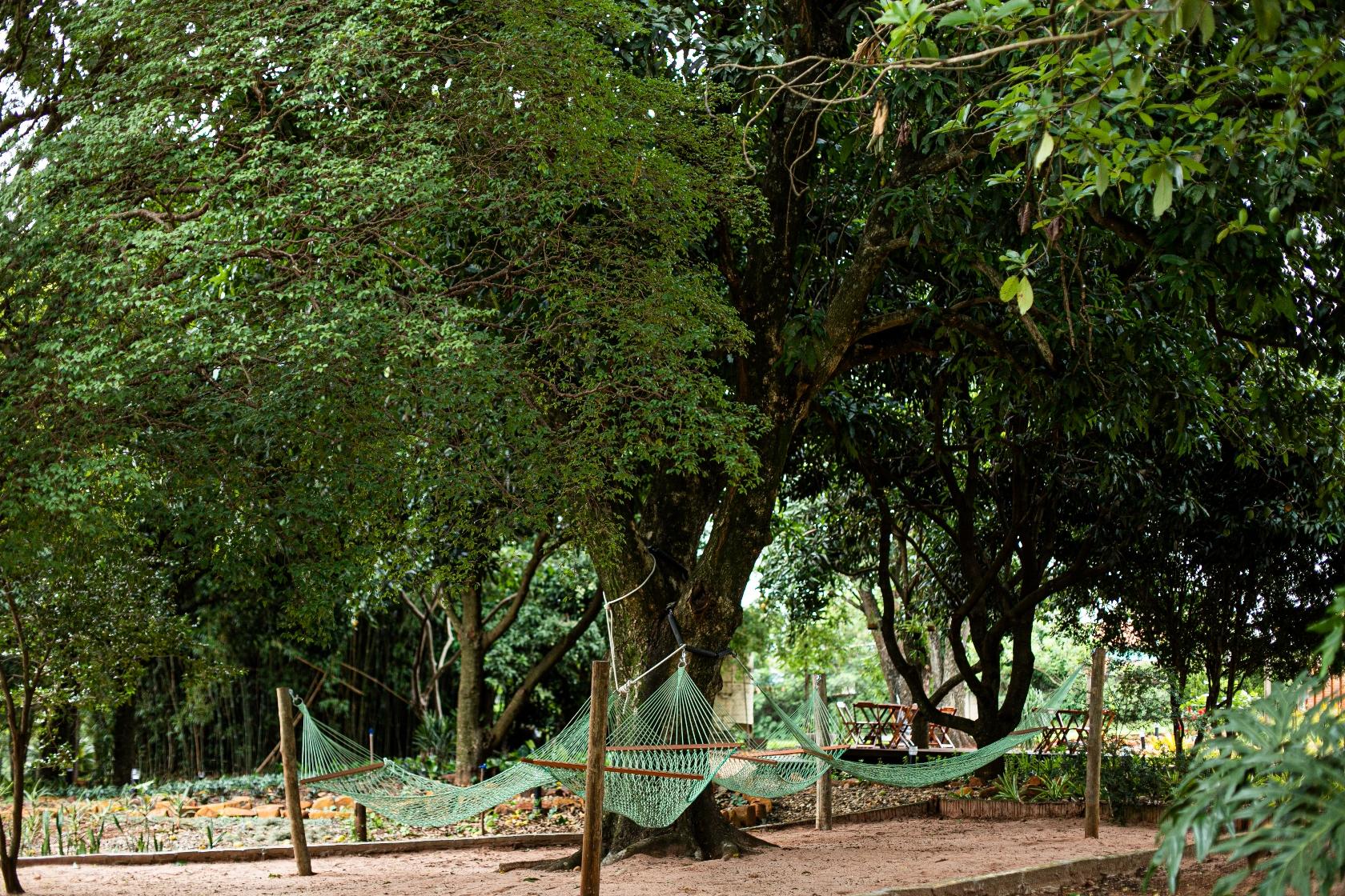 Vila Jacaré